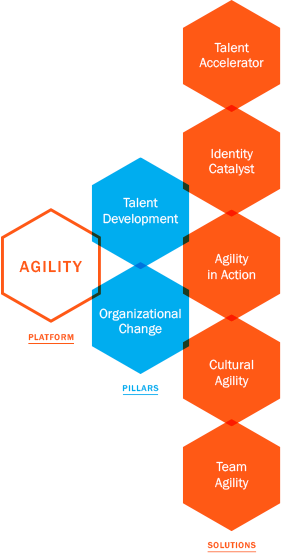 Sage Ways Consulting Agility Solutions